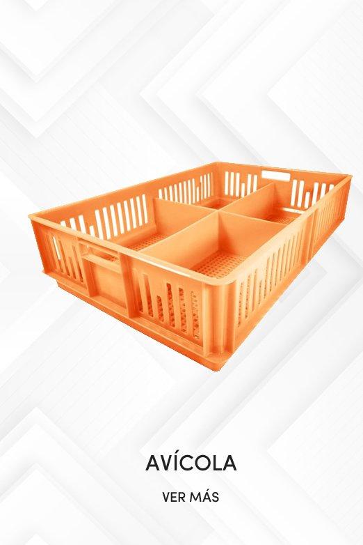Cajas- Avicola